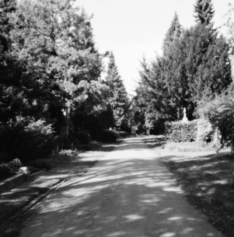 Ostfriedhof XV - Pinhole Photog - walter_ac | ello