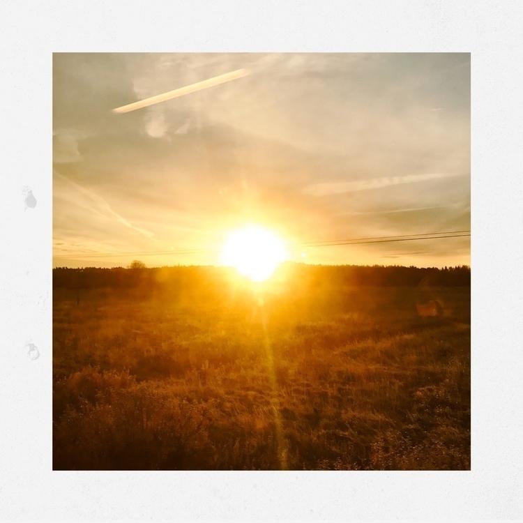 rise - sunrise, sun, field, morning - yogiwod | ello