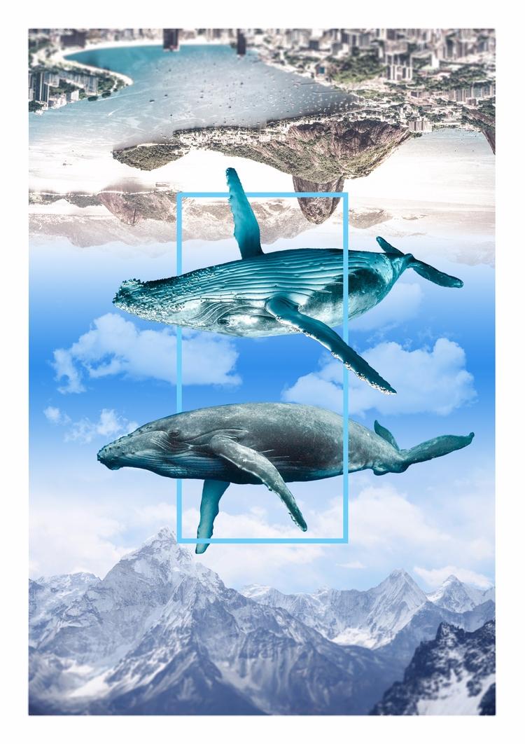 Ocean sky - graphicdesign, whales - ferreiraricardo | ello