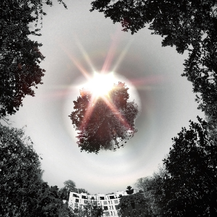 Trees sky - humphrynonstop - humphrynonstop | ello