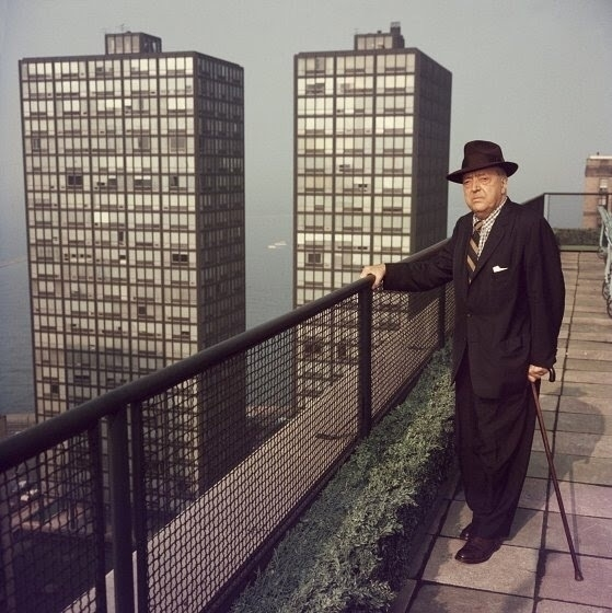 van der Rohe - Mies, Chicago - bauhaus-movement | ello