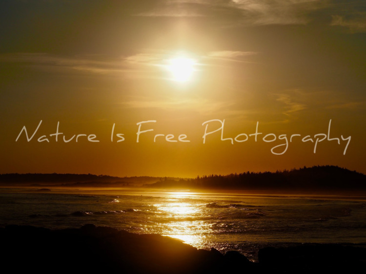 practice mindfulness, hand, cal - natureisfree | ello