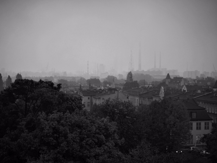Foggy days - bw, blackandwhite, photography - silvy-s | ello