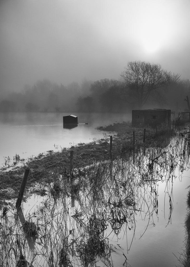 Somerton flood - misty, foggy, flooded - toni_ertl | ello