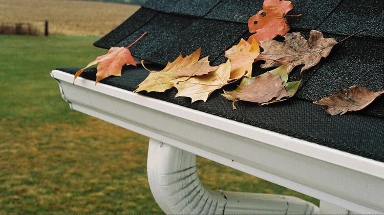 rain gutter guards worth cost?  - gwenheather | ello