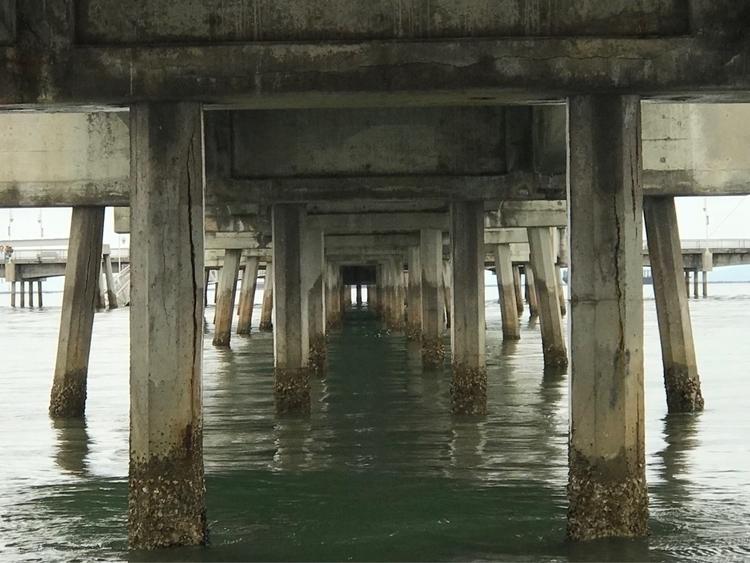Long Beach Pier - ref0rmated | ello