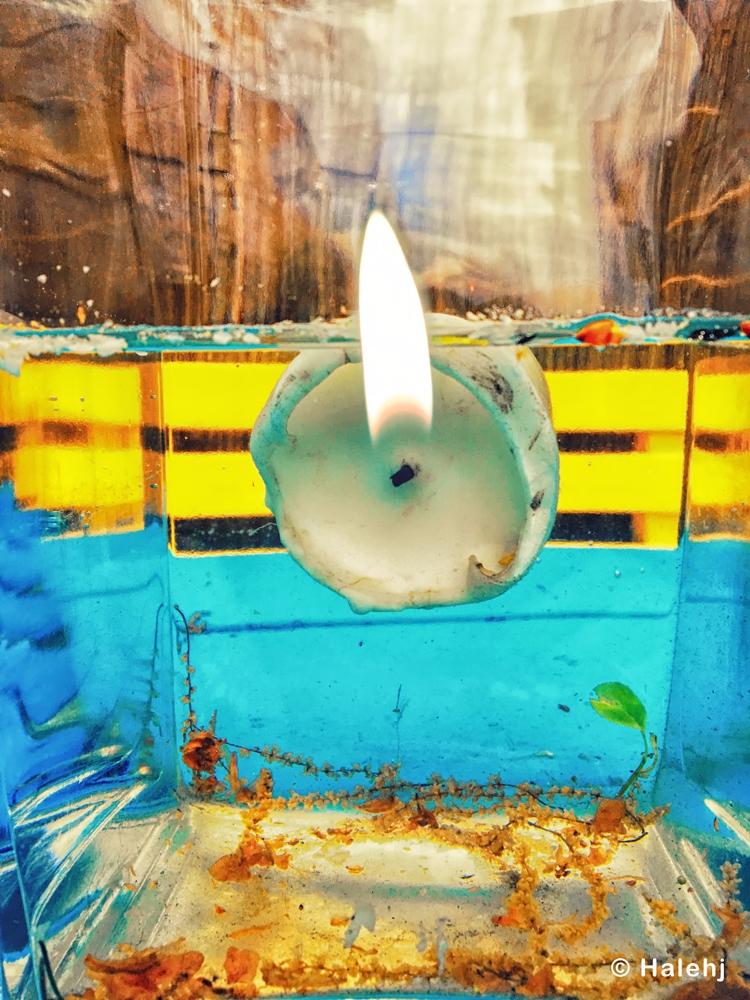 Blue - underwater, burning, ello - halehj | ello
