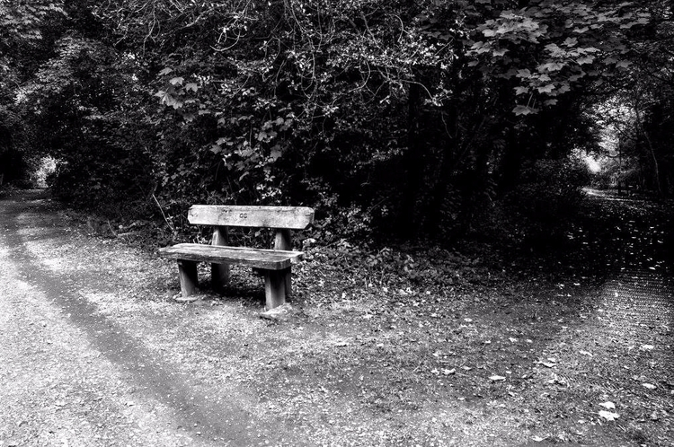 Strolling graveyard, thinking s - hugo_coutinho | ello