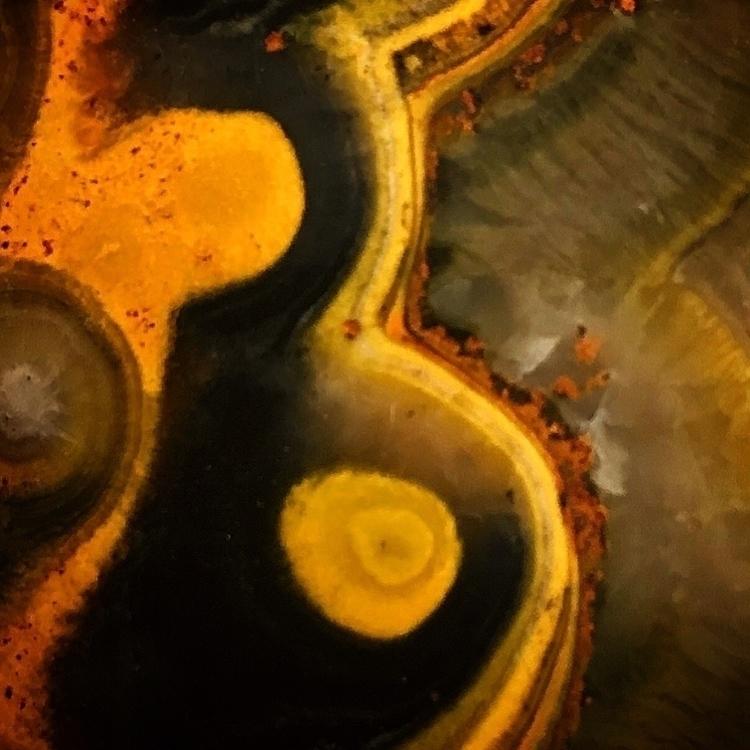 < BumbleBee Jasper > ener - silverravenstudio | ello