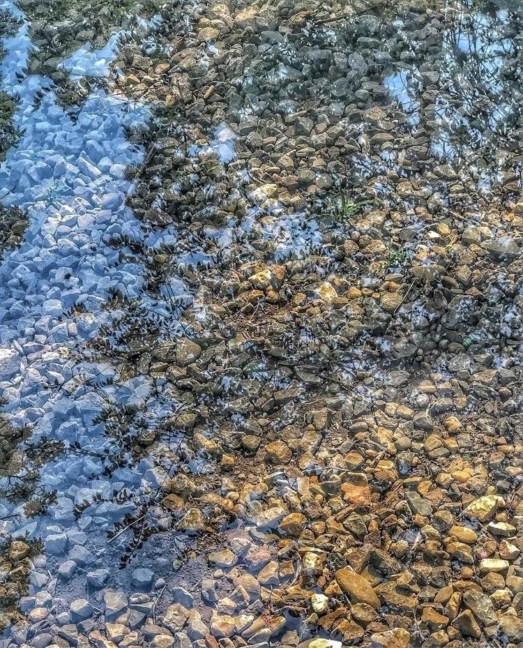 Reflection - chandra03 | ello