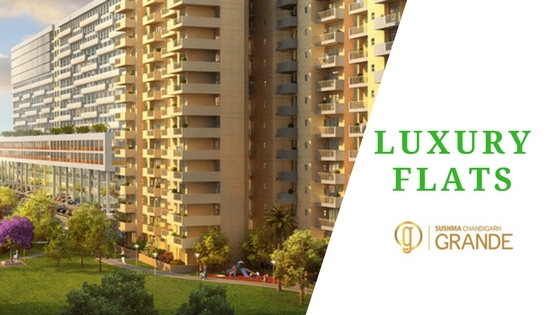 Planning buy 3 BHK 4 flat luxur - sushma-buildtech | ello