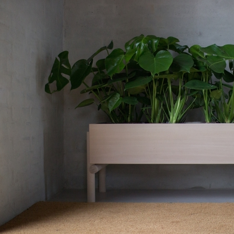 BOSK indoor garden. design Math - woodlab | ello