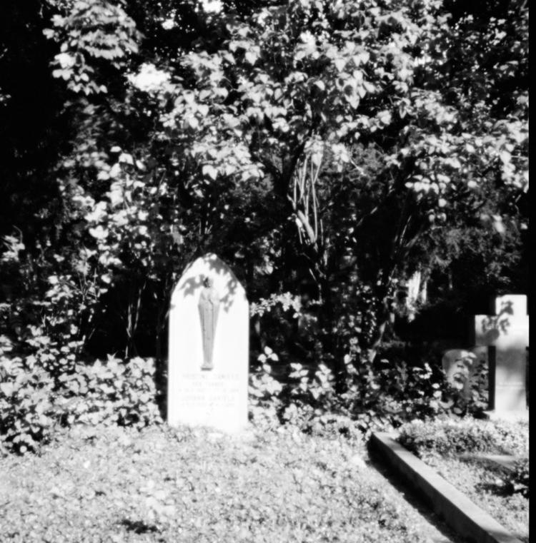 Ostfriedhof XXI - Pinhole Photo - walter_ac | ello