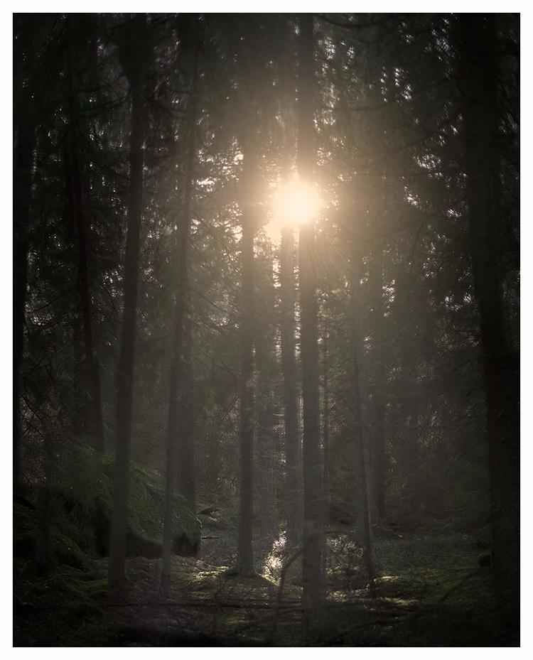October 2017 - Hemfosa, Sweden - lars_fotograf | ello