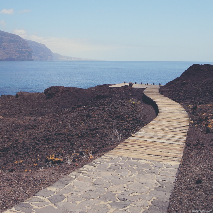 Path Tenerife, Punta Tena - tenerife - erik_schepers   ello