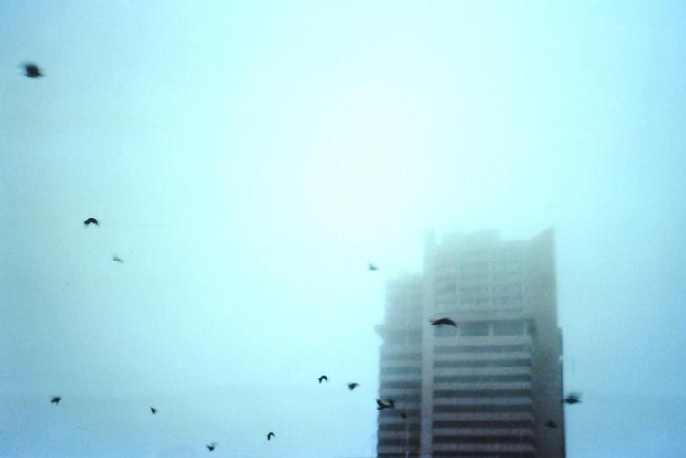 Lennart Normann, Photographer,  - highlens | ello