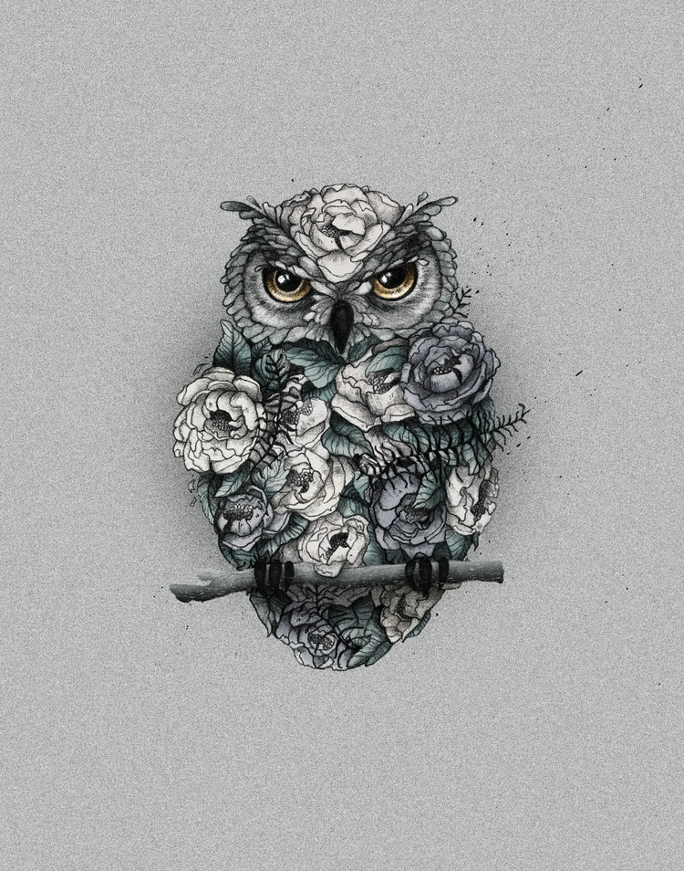 Floral Owl - illustration, handdrawn - heyambermorgan | ello