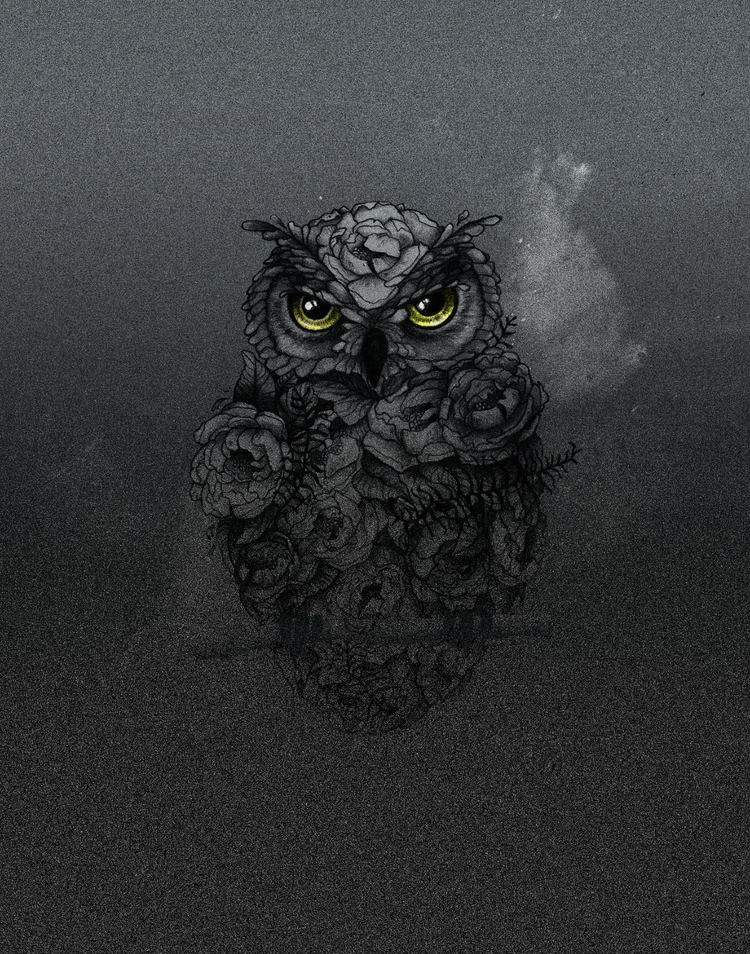 Floral Night Owl - illustration - heyambermorgan | ello