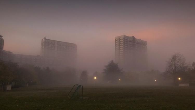 Misty Morning eliasamari.com - eliasamari | ello