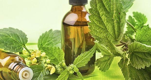 African Traditional Medicine we - aniyaerika | ello