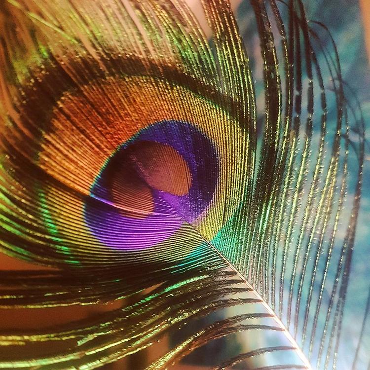 Visualising miracles . ASATO MĀ - chitreesign | ello