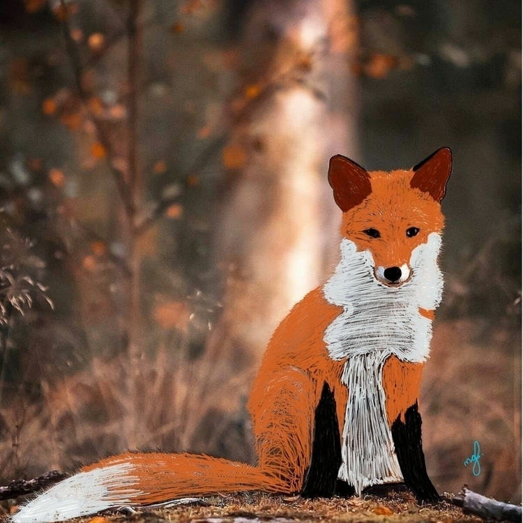 fox, foxwildlife - mac05 | ello