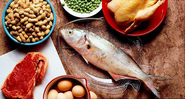 Proteins nutritive highly compl - ellojosephineray   ello