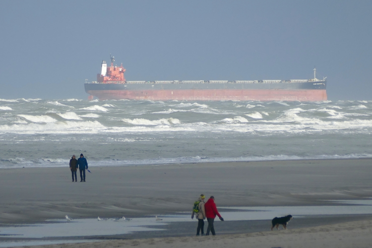GLORY AMSTERDAM stranded sandba - sabine | ello