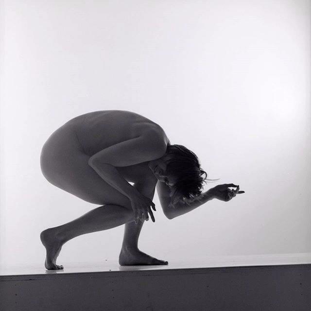 Fina Art Ballerina Workshop Pro - goopie   ello