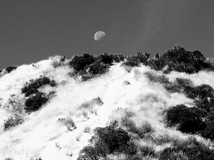 moon - metalman1108 | ello