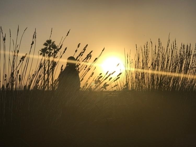 California sunrise - ref0rmated | ello