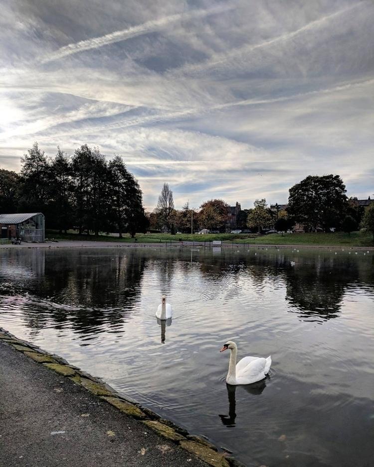 sefton park, liverpool 2017 oct - saintvaldis | ello