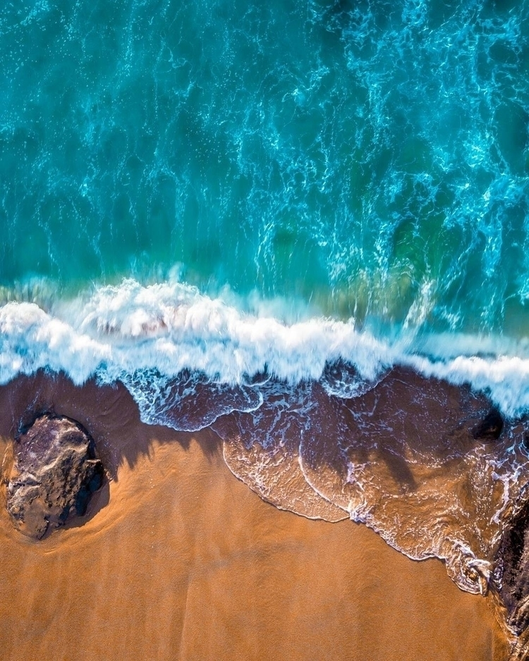 Bella wave - dronetrepreneur | ello