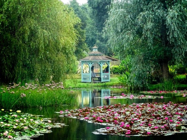 Water Gardens photography - garryknight | ello