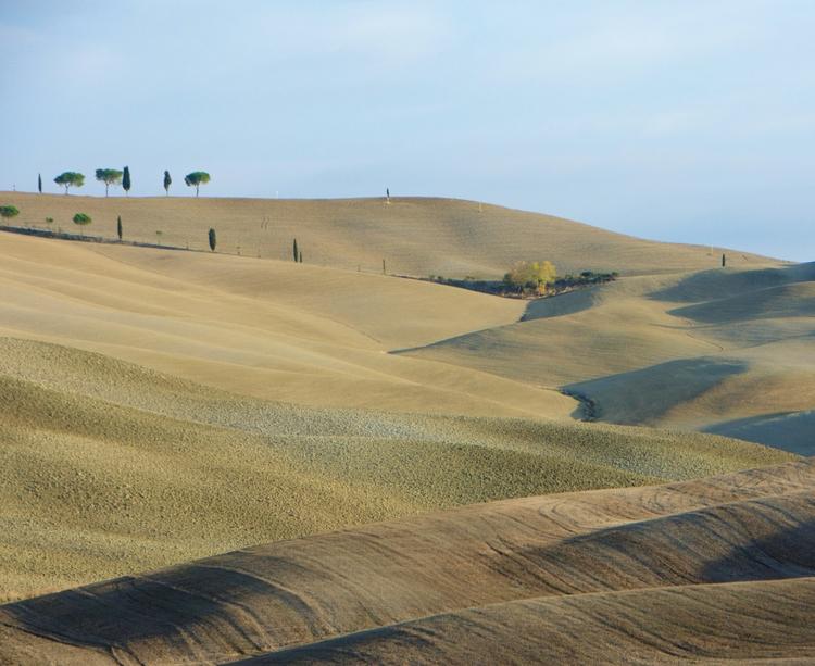Tuscany Blankets - photography, landscape - stillnessimages | ello