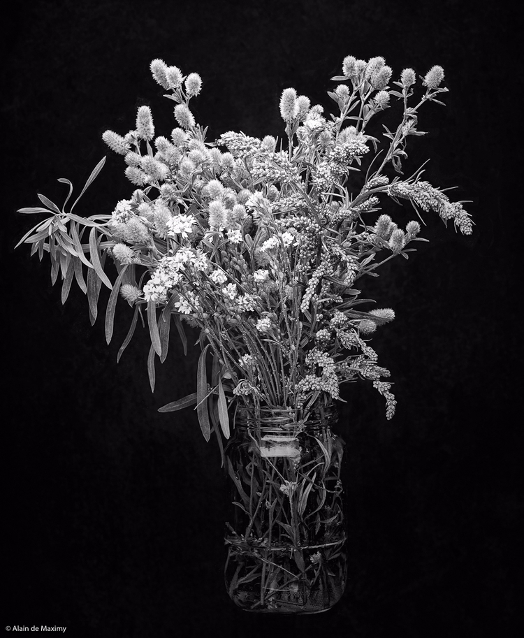 Bouquet Meadow - bouquet, meadow - maximy | ello
