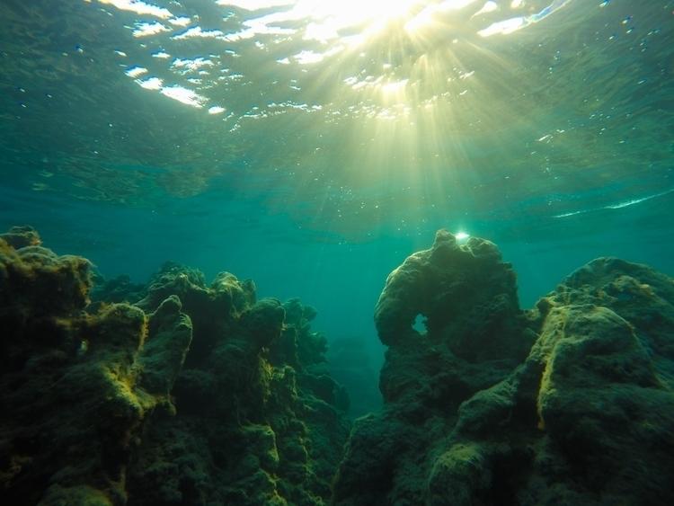 'Canyons theDeep - underwarer, fish - konstantinos776 | ello
