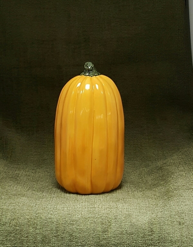 beautiful medium-sized pumpkin  - hiddenlegacy | ello