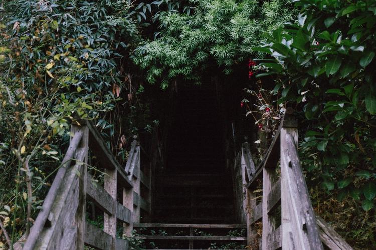 Filbert Steps - steps, scenic, sanfrancisco - talesofducky | ello
