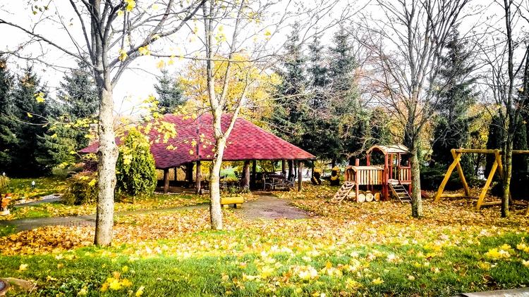 lithuania, 2017, autumn, sun - beheroght | ello
