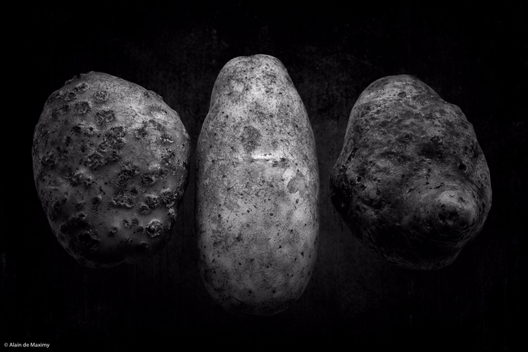 Potatoes - potatoes, tuberous, vegetable - maximy | ello