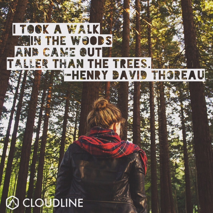 walk woods taller trees. - Henr - cloudline | ello
