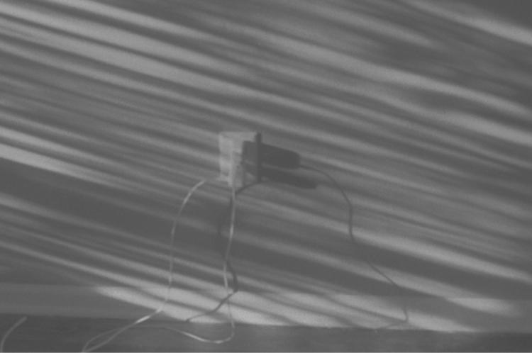 juice - film, photography, olympus - flaneurity | ello
