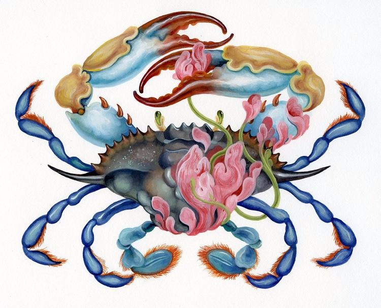 Gouache paper - illustration, crab - kitmizeresart | ello