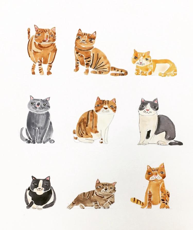 ready cat lady:cat::cat: ーーーーーー - igimidraws | ello
