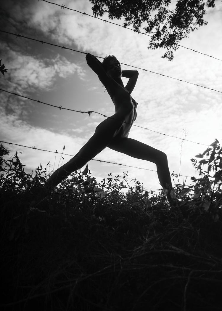 day sunshine night. -Steve Mart - stevesquall | ello