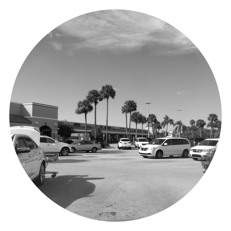Grocery Shopping Lot Apps - mikefl99 - mikefl99 | ello