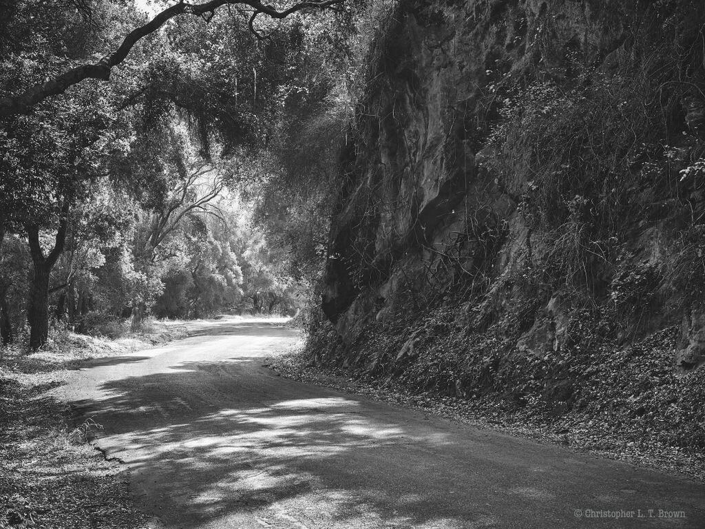 Alisal Road Solvang. WebSite - monochrome - tychobrown | ello