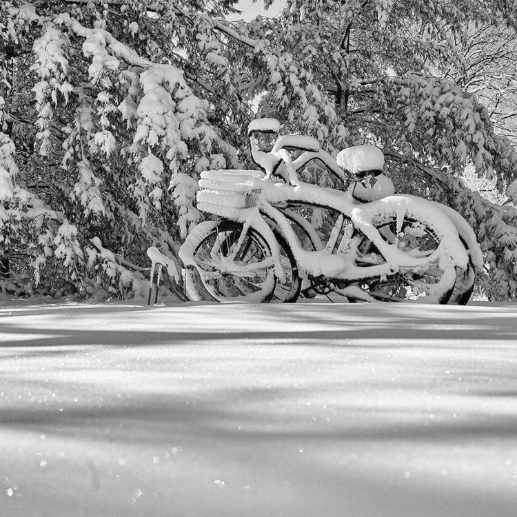 bikes,, show,, blackandwhite, - ohpreis | ello