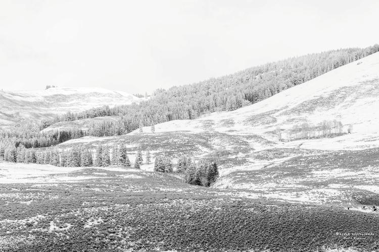 Gasp, 2017 dusting snow, gasp w - azdrk | ello